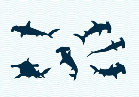 285x200 Hammerhead Shark Free Vector Graphic Art Free Download (Found 193