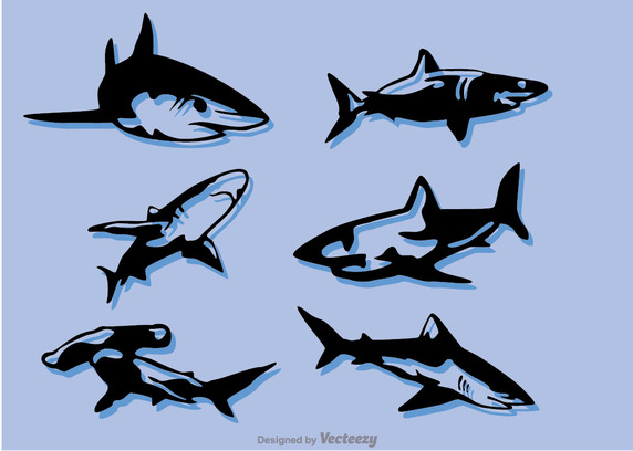 572x408 Set Of Shark Vector Free Vector Download In .ai, .eps, .svg Format