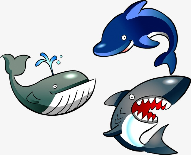 650x528 Shark, Shark Vector, Dolphin Png And Vector For Free Download
