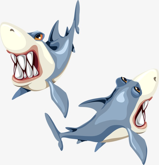 650x674 Vector Shark, Shark, Vector, Ocean Png And Vector For Free Download