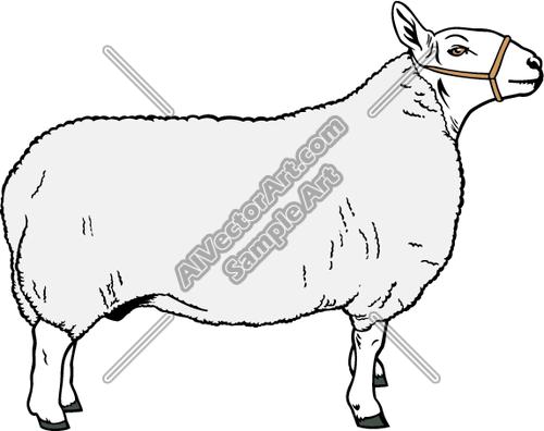 500x396 Sheep Clipart And Vectorart Animals