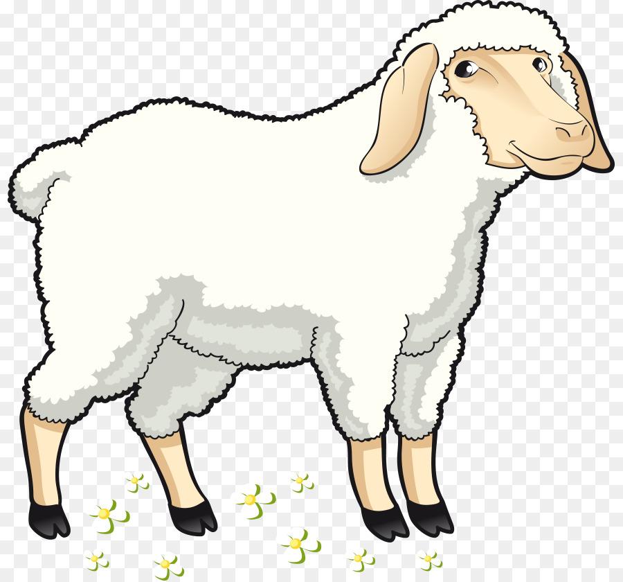 900x840 Sheep Goat Clip Art