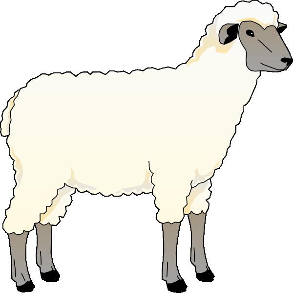 600x599 Sheep Ewe Clip Art Free Vector 4vector