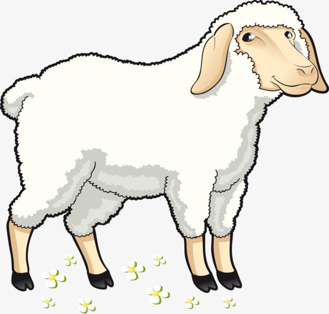 650x622 Vector Cartoon Sheep, Cartoon Vector, Sheep Vector, Cartoon