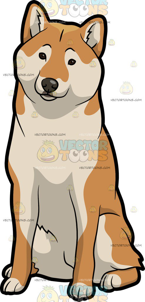 493x1024 A Nice And Observant Shiba Inu Dog Clipart By Vector Toons