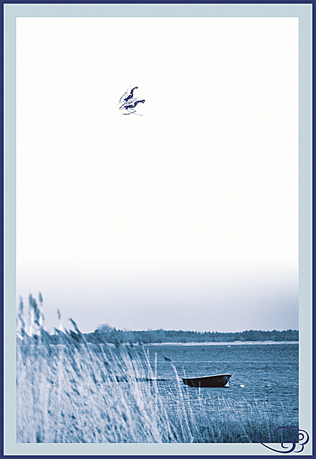 650x944 Jiangnan Background, Jiangnan, Shrimp, Boat Background Image For