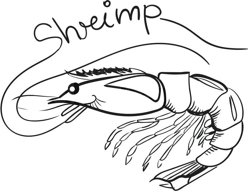 800x616 Shrimp Coloring Cartoon Smiling Shrimp Coloring Book And Dot To