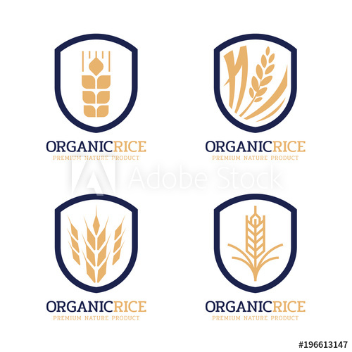 500x500 Organic Rice Logo Sign With Navy Gold Modern Paddy Rice In Vintage