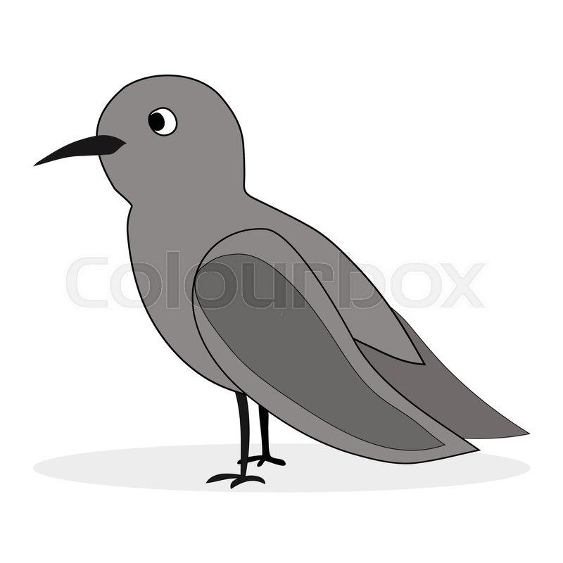 800x800 Simple Cartoon Nightingale. Bird Florence Nightingale, Nightingale