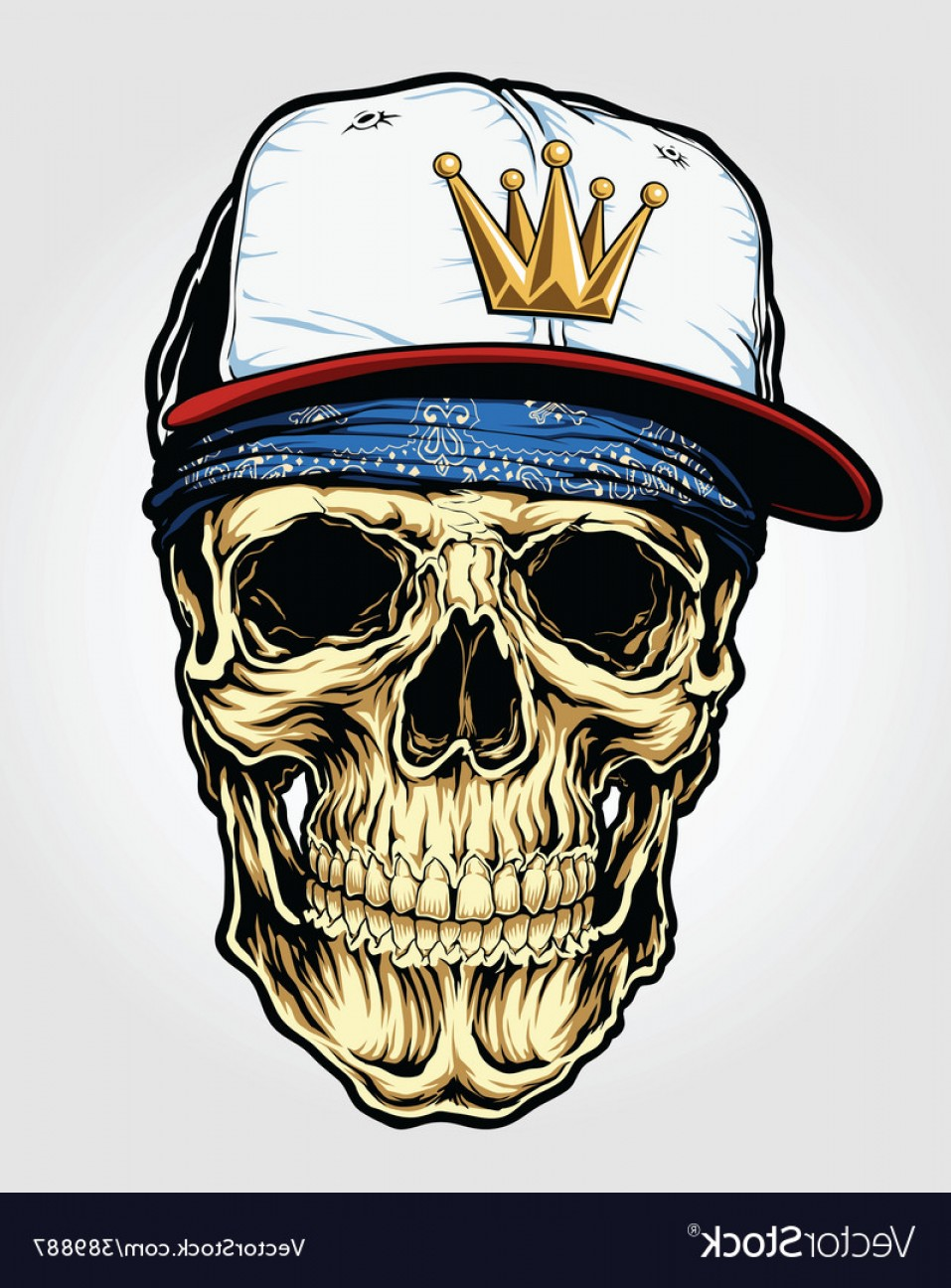 957x1296 Skull With Bandana And Cap Vector Shopatcloth