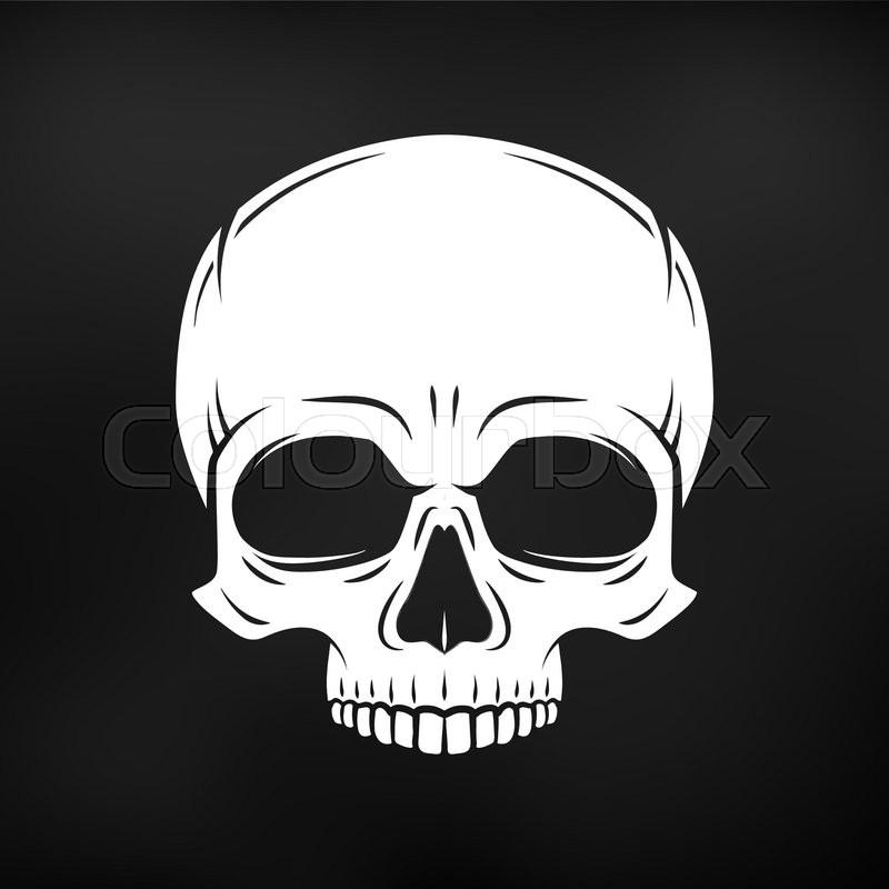 800x800 Human Evil Skull Vector. Jolly Roger Logo Template. Death T Shirt