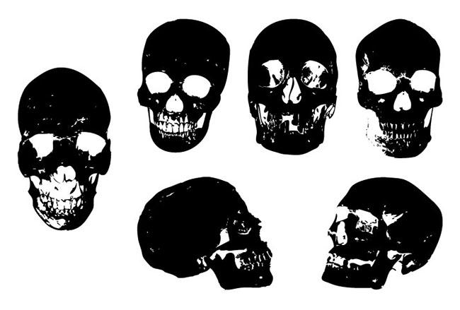 650x439 Skull Vector Package Eps