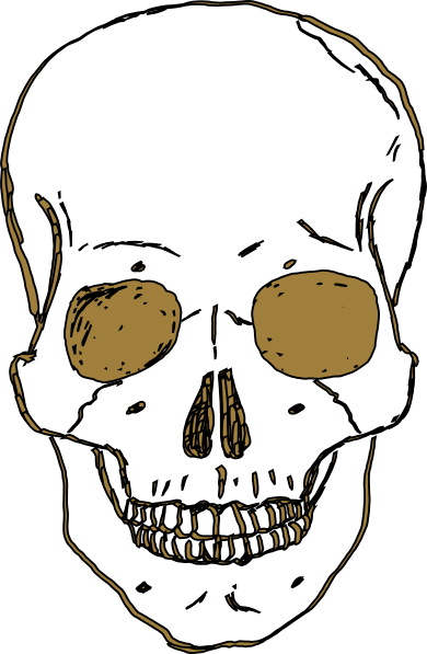 Skull Vector Free Download
