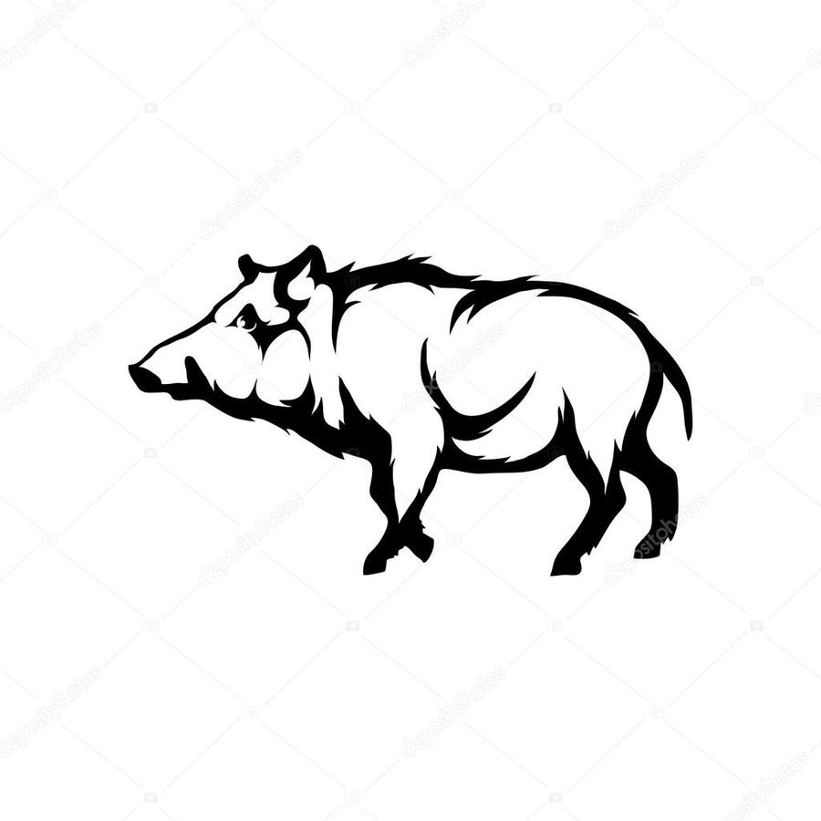 900x900 Download Boars Skull Vector Clipart Wild Boar Common Warthog