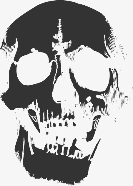 452x631 Skull, Vector Skull, Skull Graphic Png And Vector For Free Download