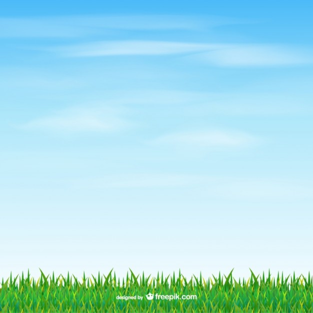 626x626 Grass And Sky Vector Free Download