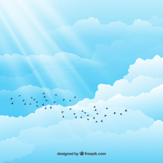 626x626 Birds In The Cloudy Sky Vector Free Download