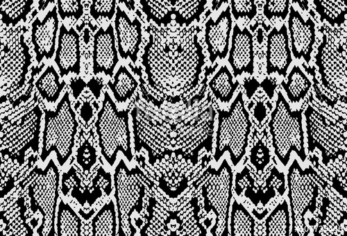 500x340 Snake Python Skin Texture. Seamless Pattern Black On White
