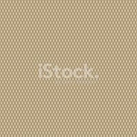200x200 Seamless Python Snake Skin Vector Illustration Stock Vectors