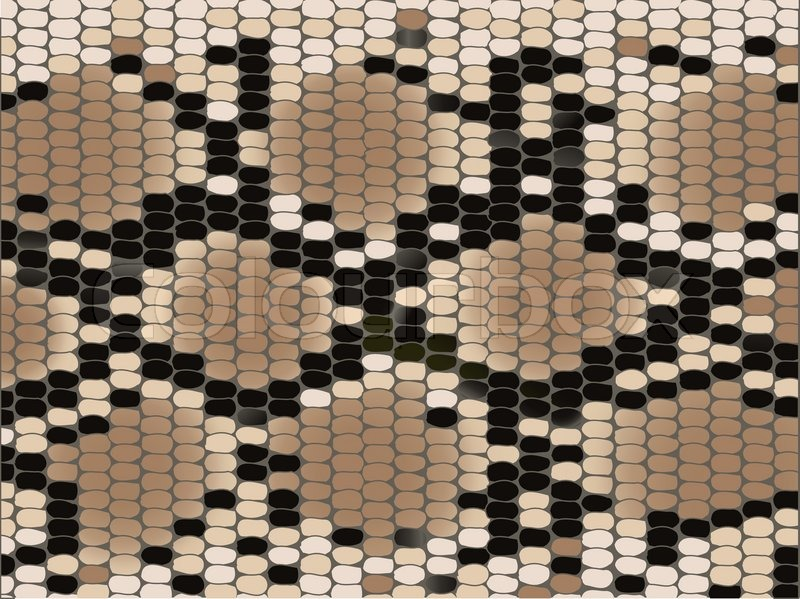 800x599 Snake Skin With The Pattern Lozenge Form Stock Vector Colourbox