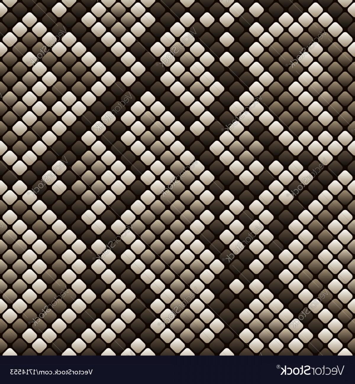 1200x1296 Snakeskin Seamless Pattern Vector Sohadacouri