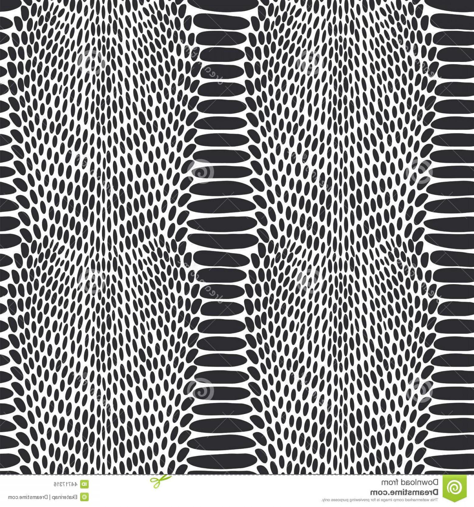 1560x1668 Stock Illustration Snake Skin Texture Seamless Pattern Black White