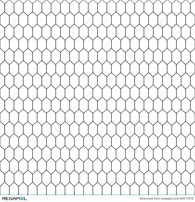 800x830 Snake Skin Texture. Seamless Pattern Black And White Background