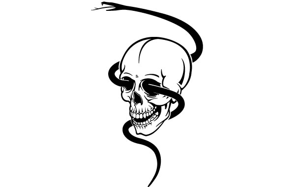 600x380 Skull Snake Vectors, Photos And Psd Files Free Download