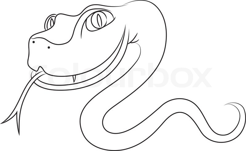 800x490 Contour Drawing Crawling Snake. Stock Vector Colourbox