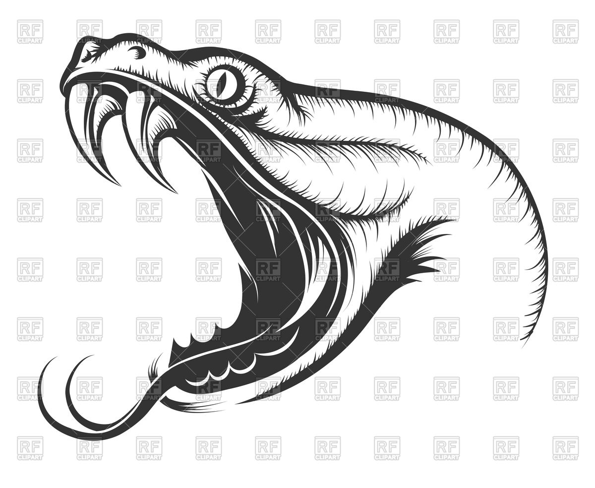 1200x984 Head Of Attacking Snake Vector Image Vector Artwork Of Plants