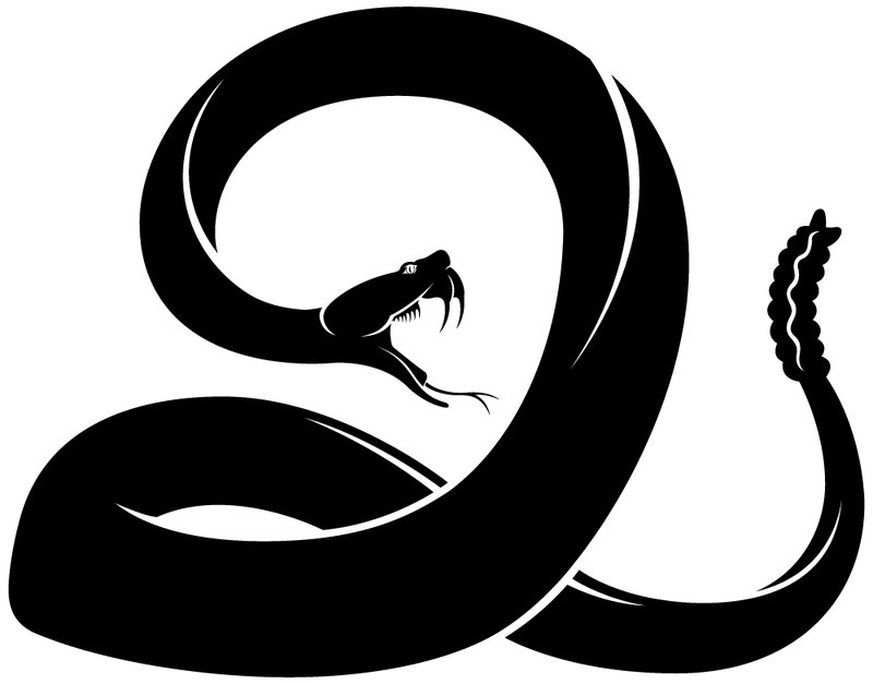 800x627 Collection Of Snake Drawing Vector High Quality, Free