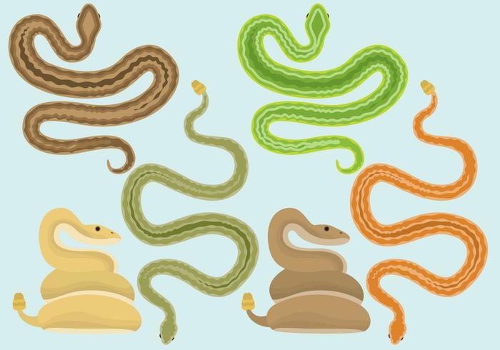 700x490 Snake Free Vector Art