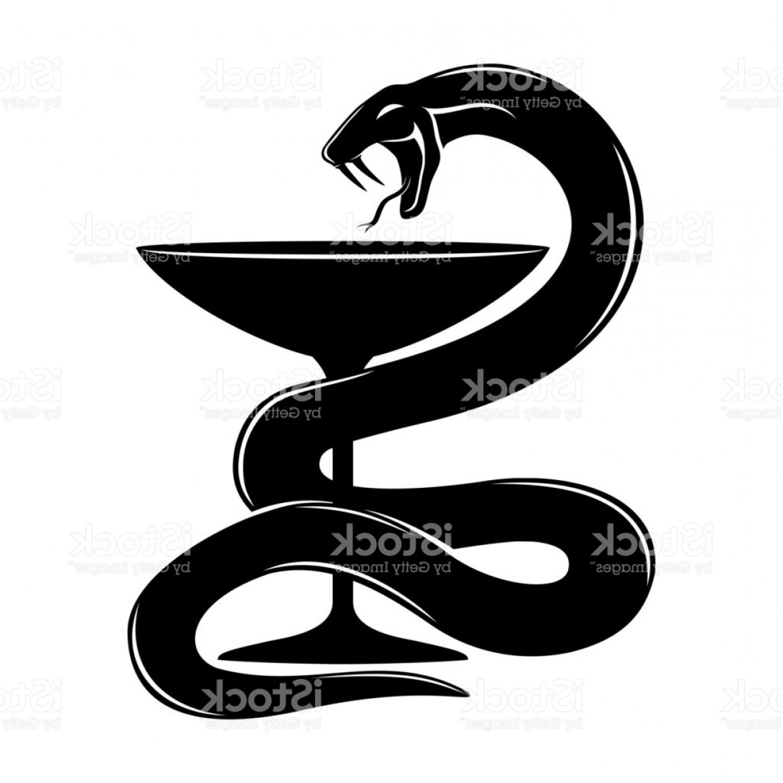 1228x1228 Snake Vector Art Arenawp