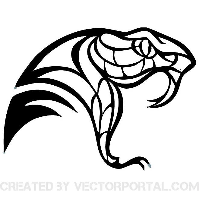 660x660 Free Snake Vectors 54 Downloads Found
