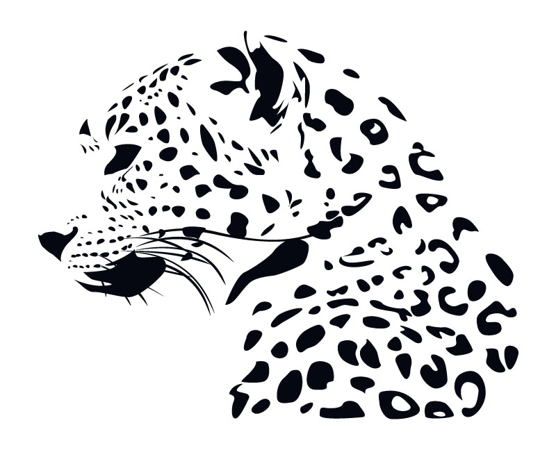 800x648 Leopard Vector. By Thehalfinger