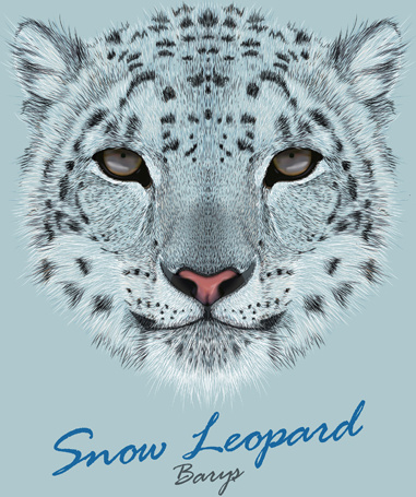 381x455 Beautiful Snow Leopard Vector Background Free Vector In