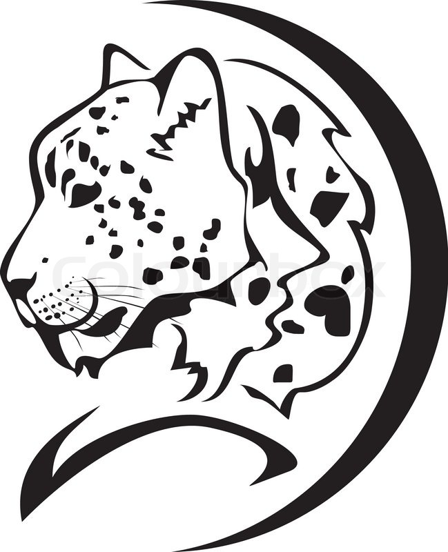 649x800 Snow Leopard Head Symbol. Black On The White Stock Vector
