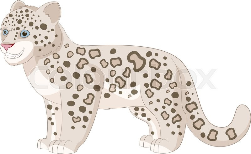 800x492 Vector Image Of The Cartoon Smiling Snow Leopard Stock Vector