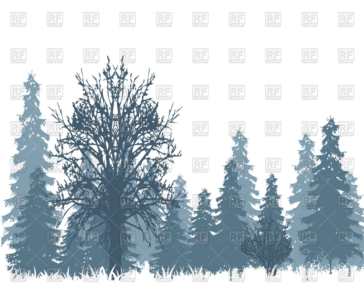 1200x958 The Landscape Winter Wood And Tree In Snow Vector Image Vector