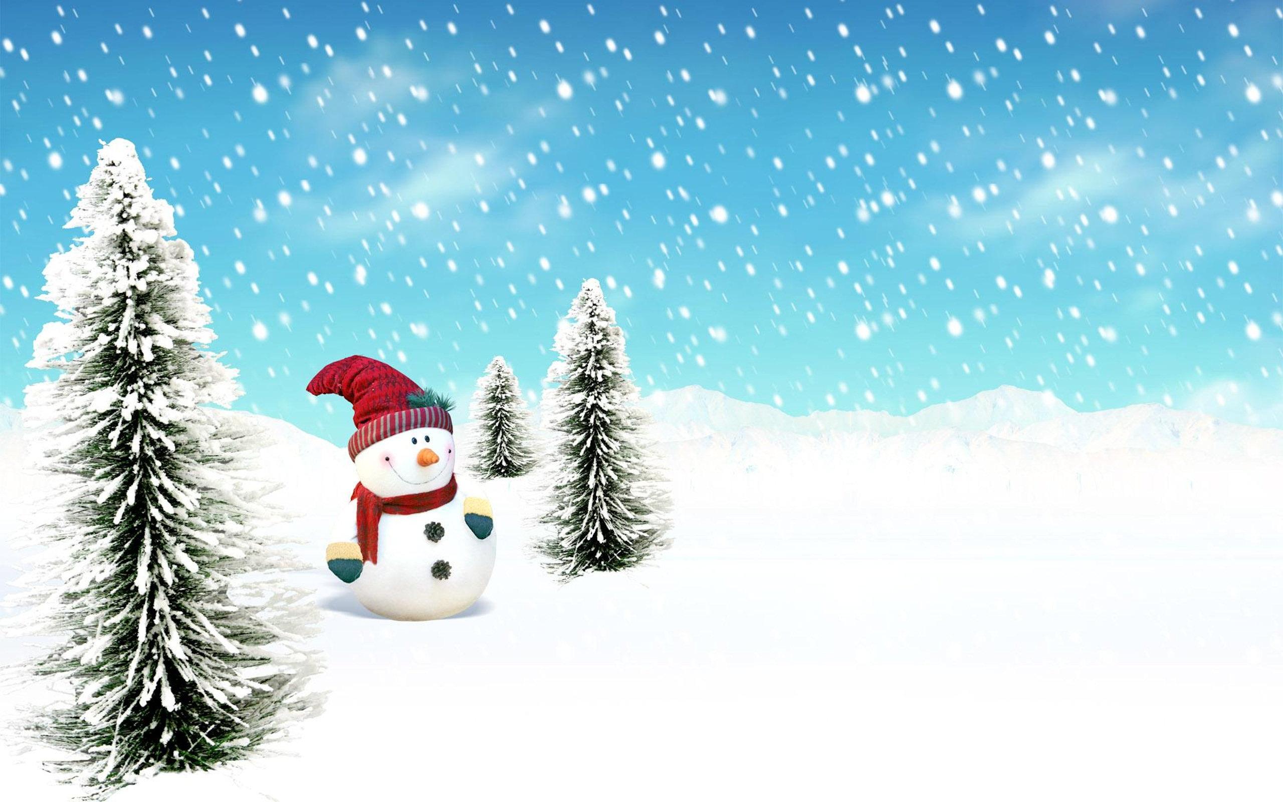 2560x1600 Snow Vector 15 An Images Hub