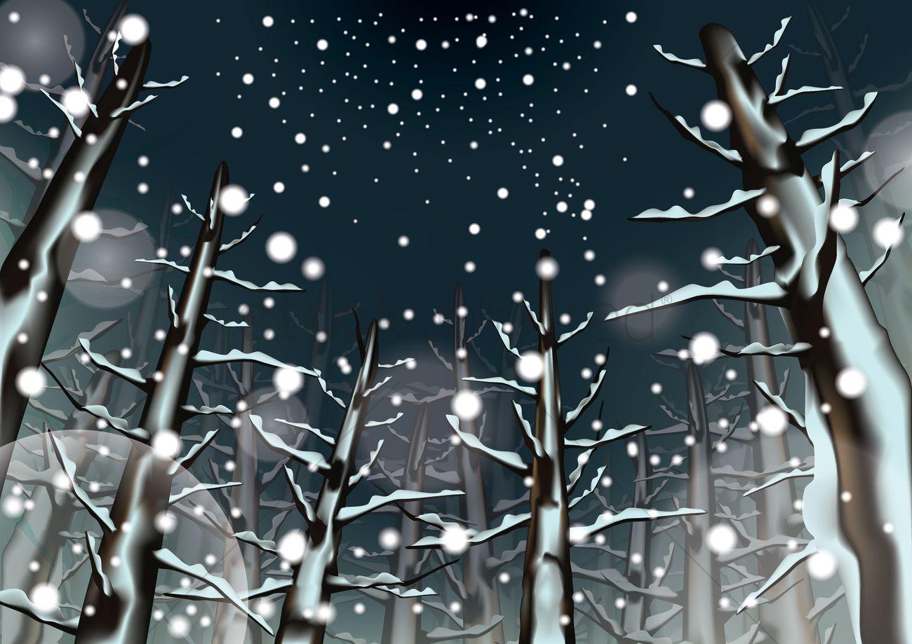 1300x919 Snowfall Vector Image