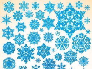 310x233 Snowflake Vector Material 2 Free Vectors Ui Download