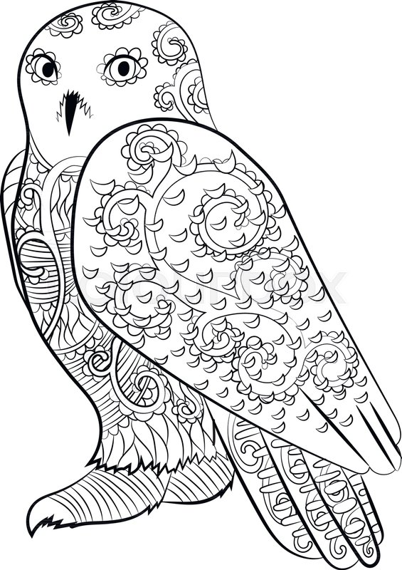 565x800 High Detailed Illustration Of An Snowy Owl In The Zentangle Style