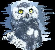 190x174 Gxp Snowy Owl Vector Art By Gxp Spreadshirt