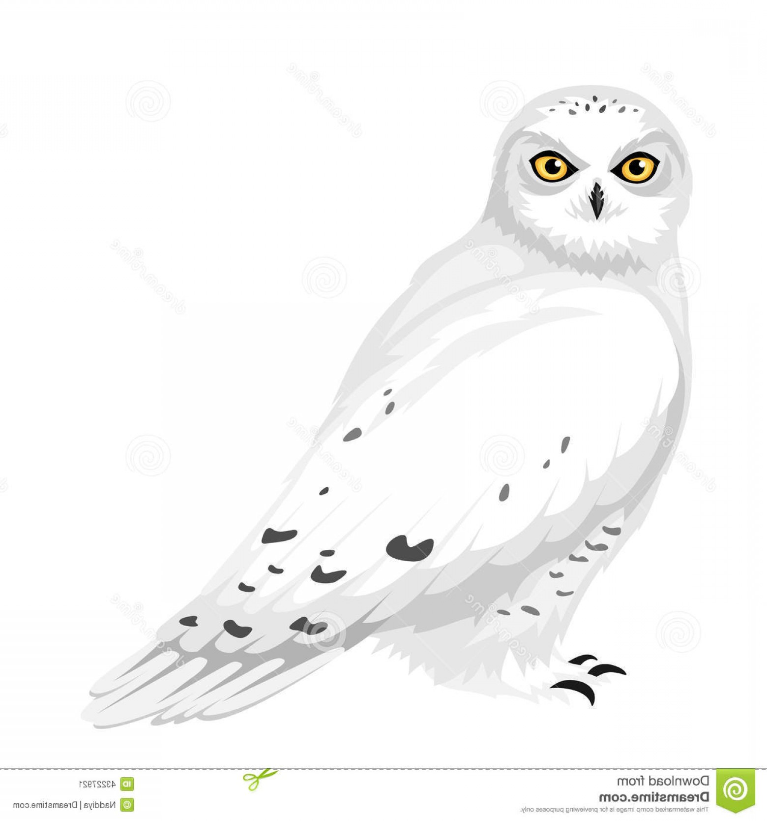 1560x1668 Destiny Cartoon Snowy Owl Unsurpassed Vector Illustration Stock Of