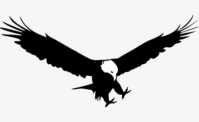 650x400 Eagle Predation, Eagle Vector, Eagle Soaring, Fly High Png And
