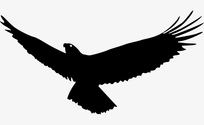 650x400 Eagle Wings, Eagle Vector, Wings Vector, Eagle Soaring Png And