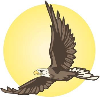 350x337 Free Soaring Eagle Clipart And Vector Graphics