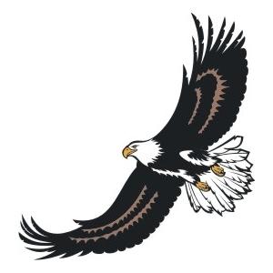 300x300 Soaring Eagle