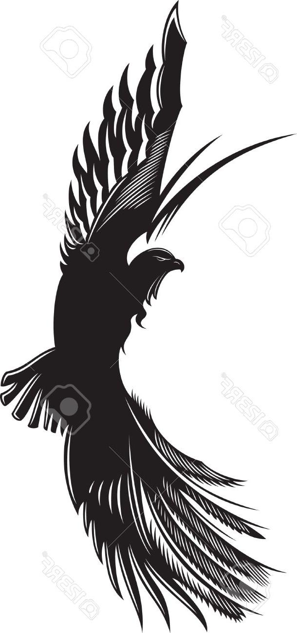 610x1300 Best Free Vector Abstract Drawing Of Soaring Eagle Stock Tattoo